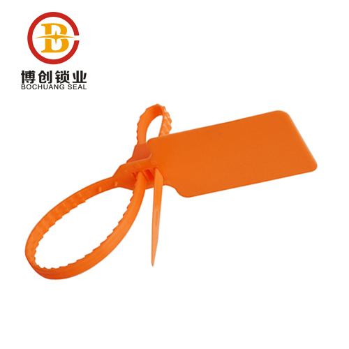 China high quality disposable plastic security lock